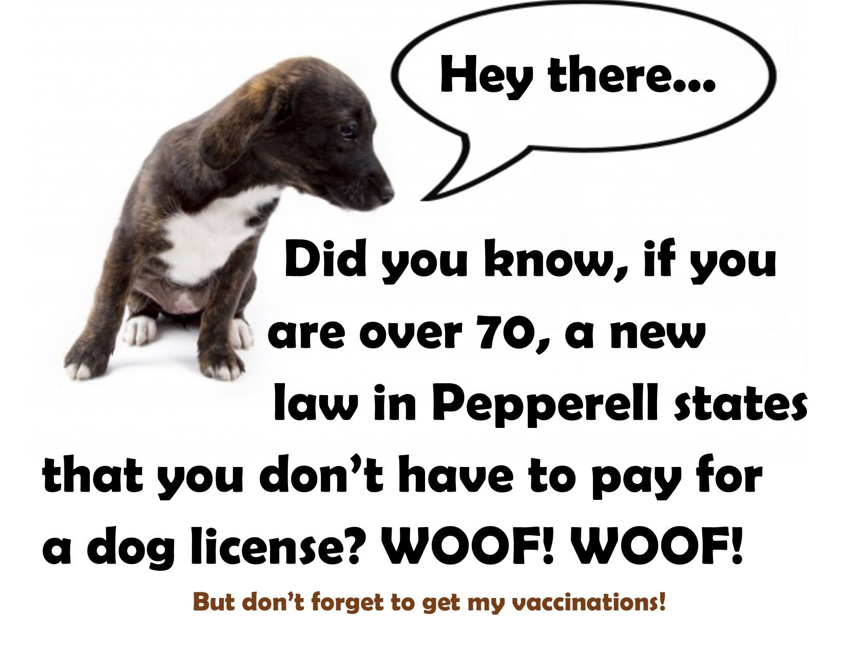 Dog License change